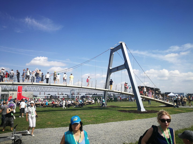 пешеходный струнный мост